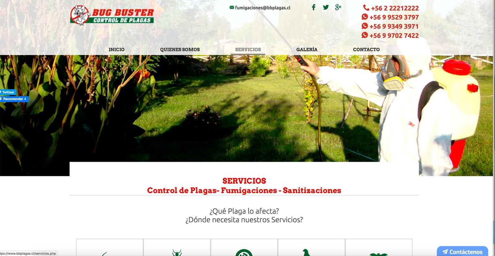 Servicios para el control de palomas